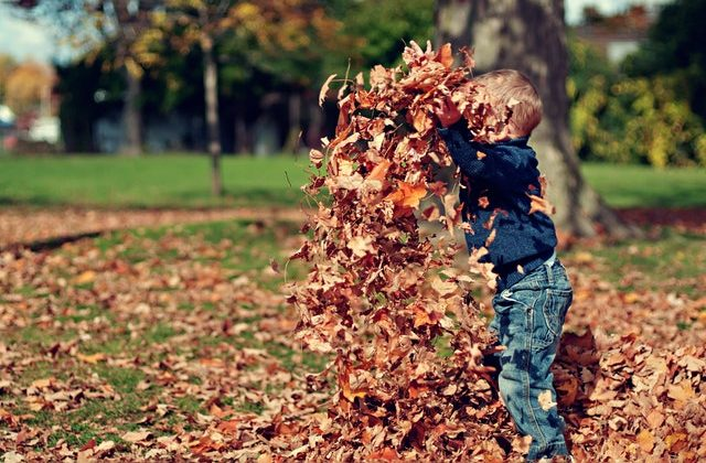 boy-playing-with-fall-leaves-outdoors