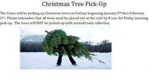 Christmas Tree Pick Up