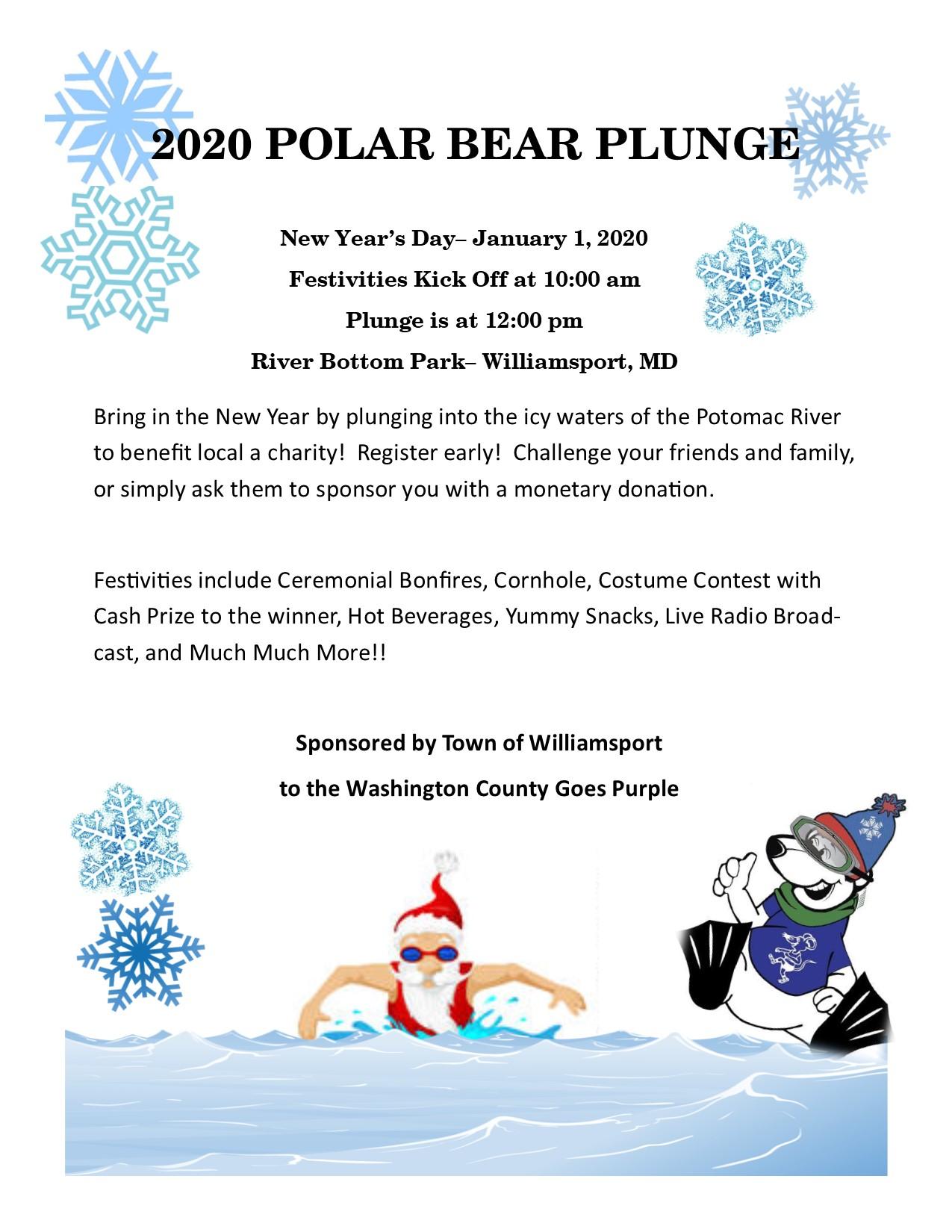 Polar Bear Plunge 2020